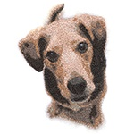 Create Memorable Embroidered gifts with the NEW PhotoStitch and PhotoFlash Tools